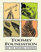 Toomey Foundation Logo.jpg