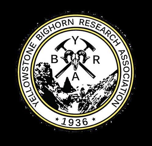 YBRA Logo.png