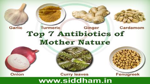 Siddha-Natural-Antibiotics.jpg