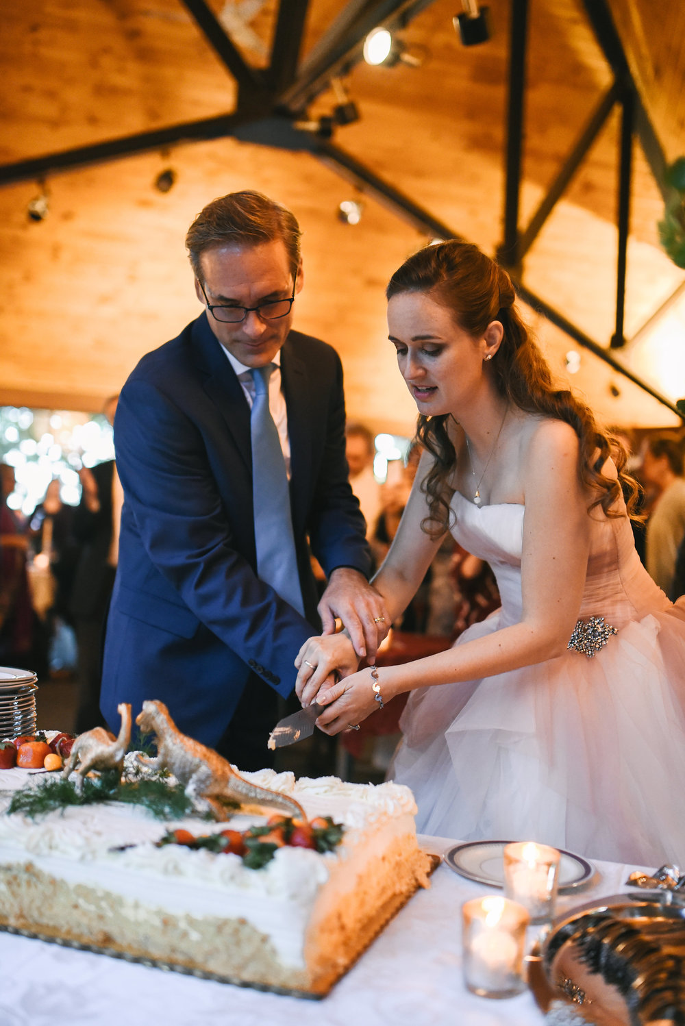 Vintage, DIY, Rustic, Germantown, DC Wedding Photographer, Alternative, Casual, Outdoor Wedding, Wedding Cake, Cake Topper, Whimsical, Cutting the Cake, Bride and Groom, Wedding Reception