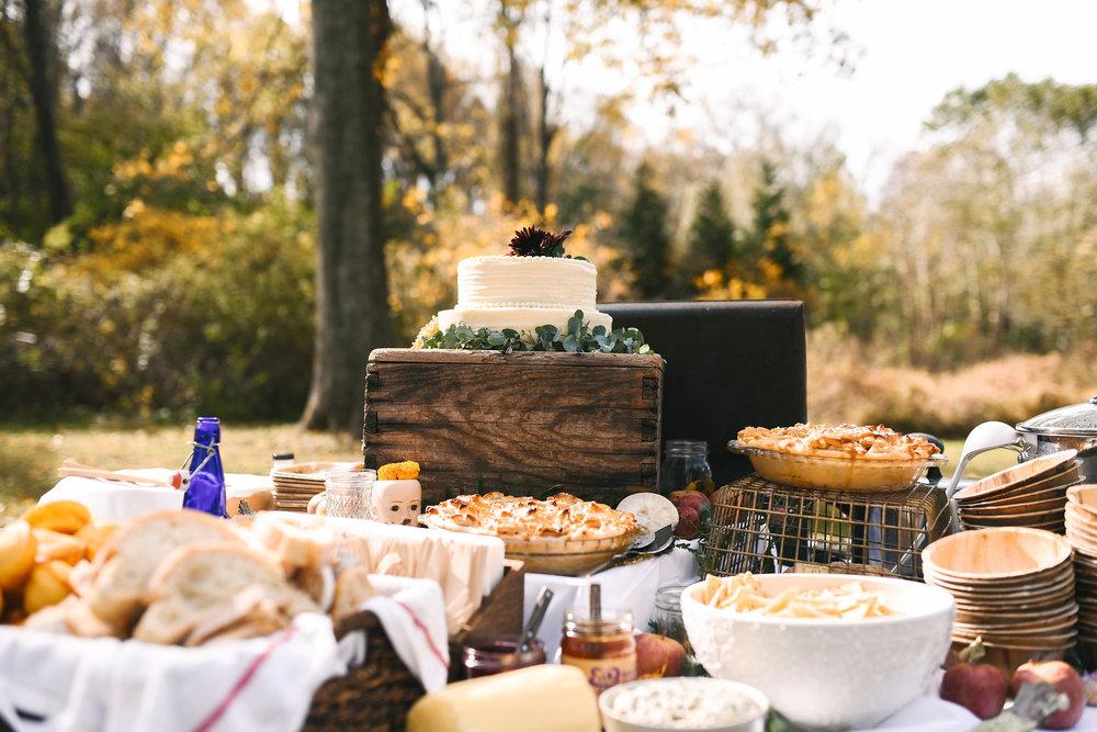 Baltimore, Maryland Wedding Photographer, Backyard Wedding, DIY, Rustic, Casual, Fall Wedding, Woodland, Dessert Table at Reception, Wedding Cake, Crooked Fence Farm