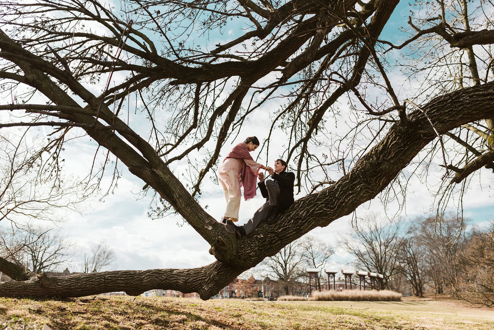 Elopement, Weekday Wedding, Towson, Rawlings Conservatory, Greenhouse, Baltimore Wedding Photographer, Indian American, Outdoor, Nature, Romantic, Garden, Climbing Trees