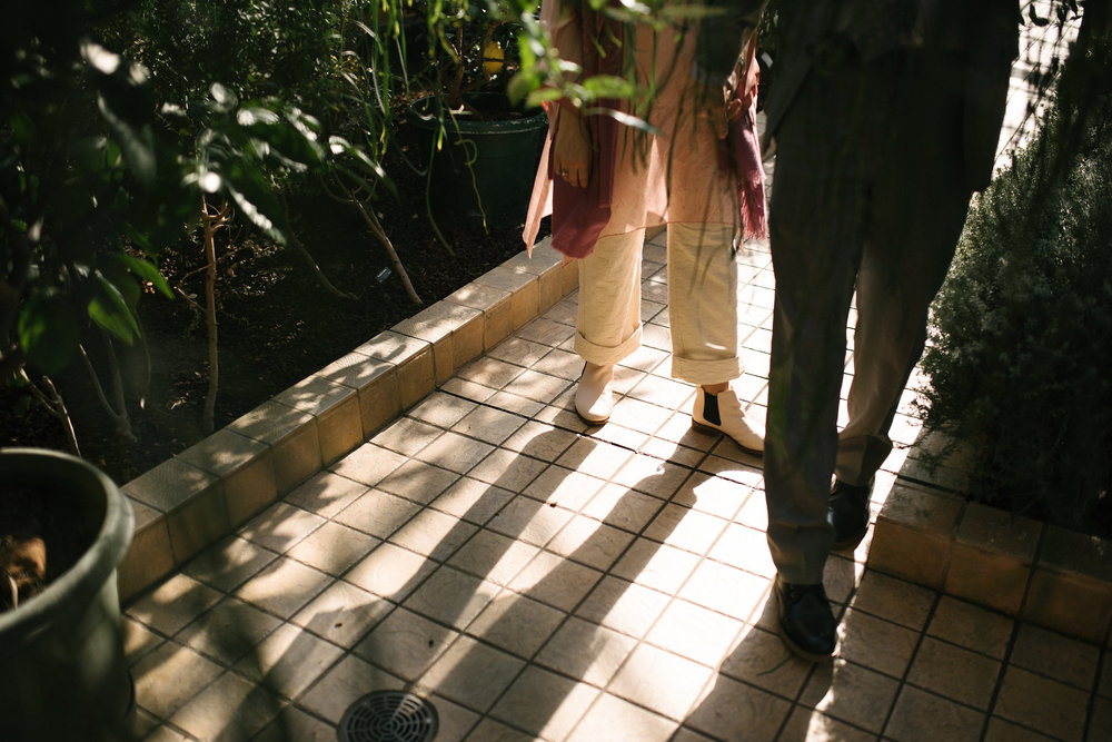 Elopement, Weekday Wedding, Towson, Rawlings Conservatory, Greenhouse, Baltimore Wedding Photographer, Indian American, Outdoor, Nature, Romantic, Garden, Casual, Walking in Sunlight