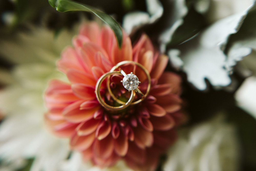 Elegant, Columbia Country Club, Chevy Chase Maryland, Baltimore Wedding Photographer, Classic, Traditional, Jewish Wedding, Closeup of Boone & Sons Rings on Coral Pink Dahlia