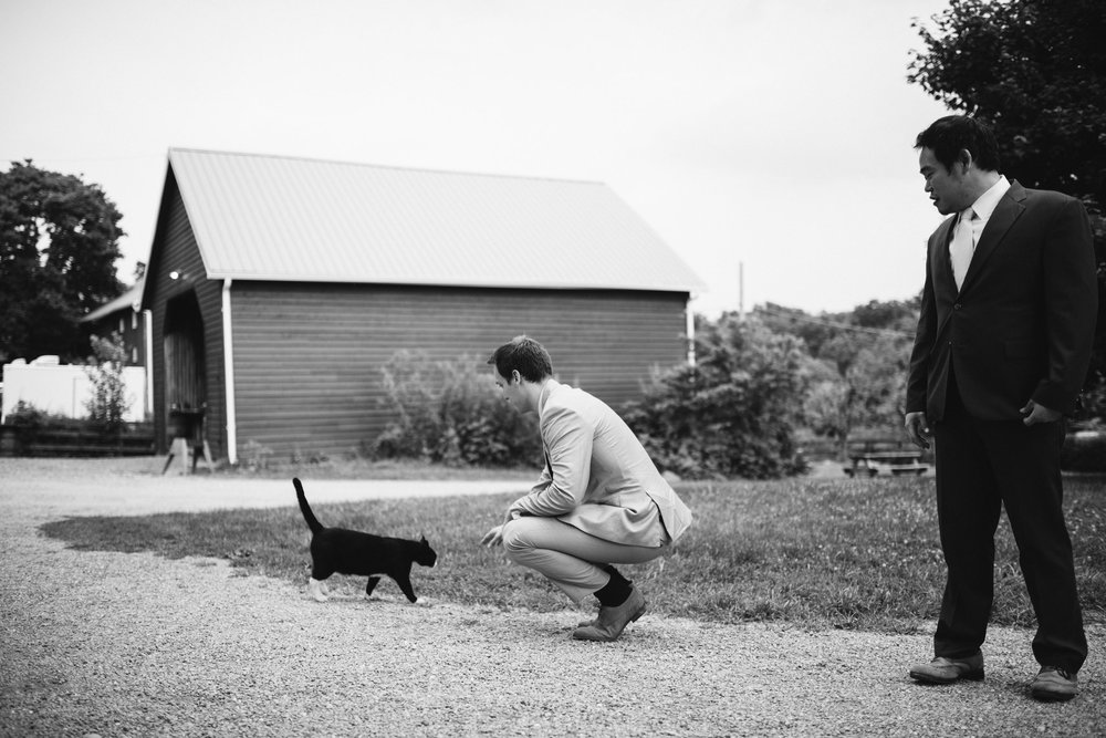 Rocklands Farm, Maryland, Intimate Wedding, Baltimore Wedding Photographer, Sungold Flower Co, Rustic, Romantic, Barn Wedding, Wedding Guest with Farm Cat, Black and White Photo