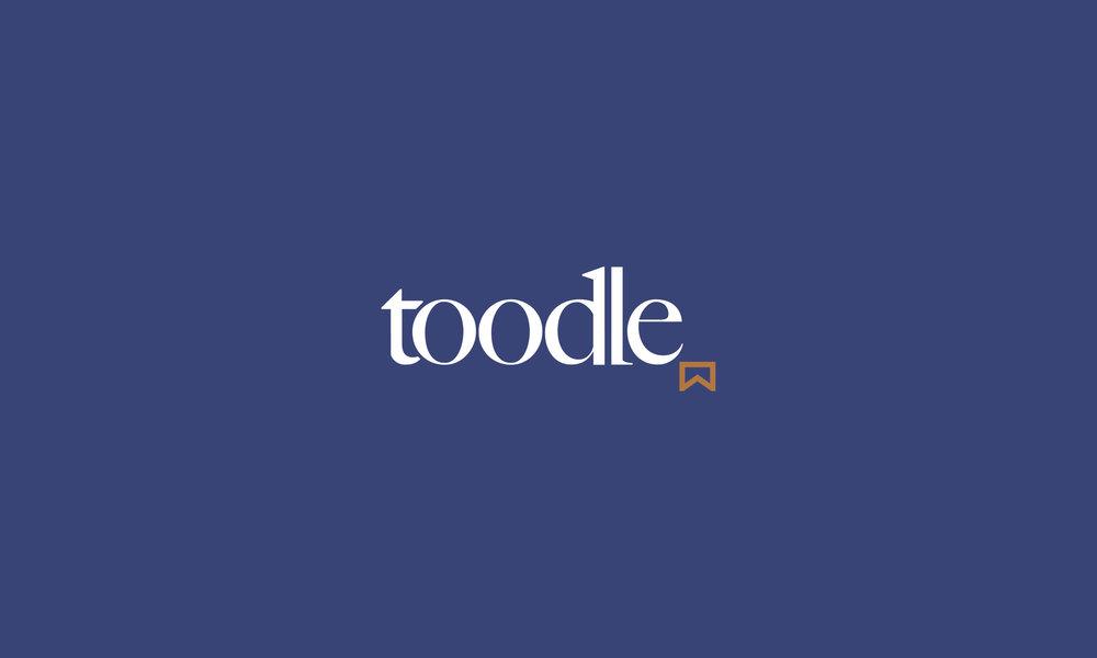 Detail-Toodle-LogoBanner.jpg