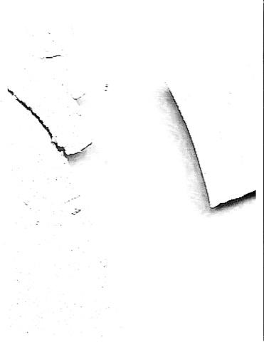 D-1-1.jpg