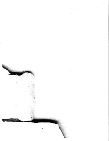 D-1-4.jpg
