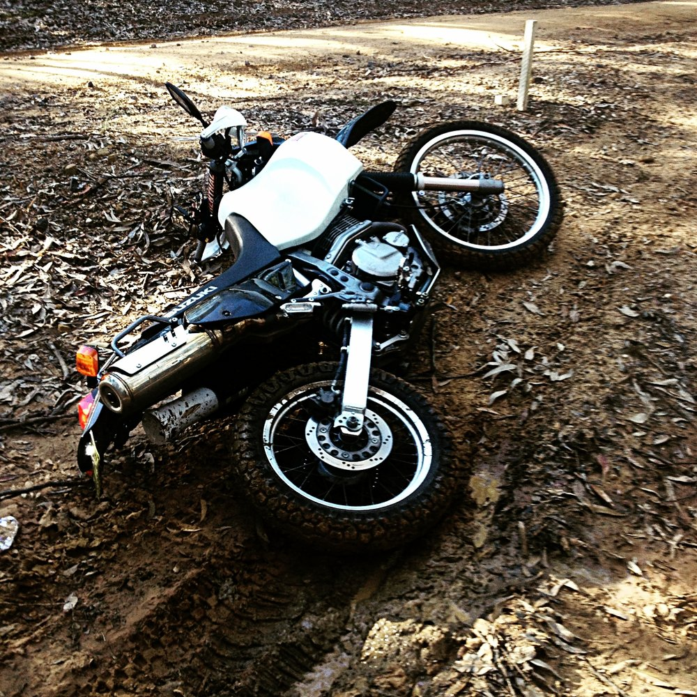 DR having a rest in the bush. But being both tough and cheap it's ok. A KTM or BMW rider would be crying!
