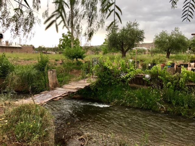 Mendoza 1.jpg