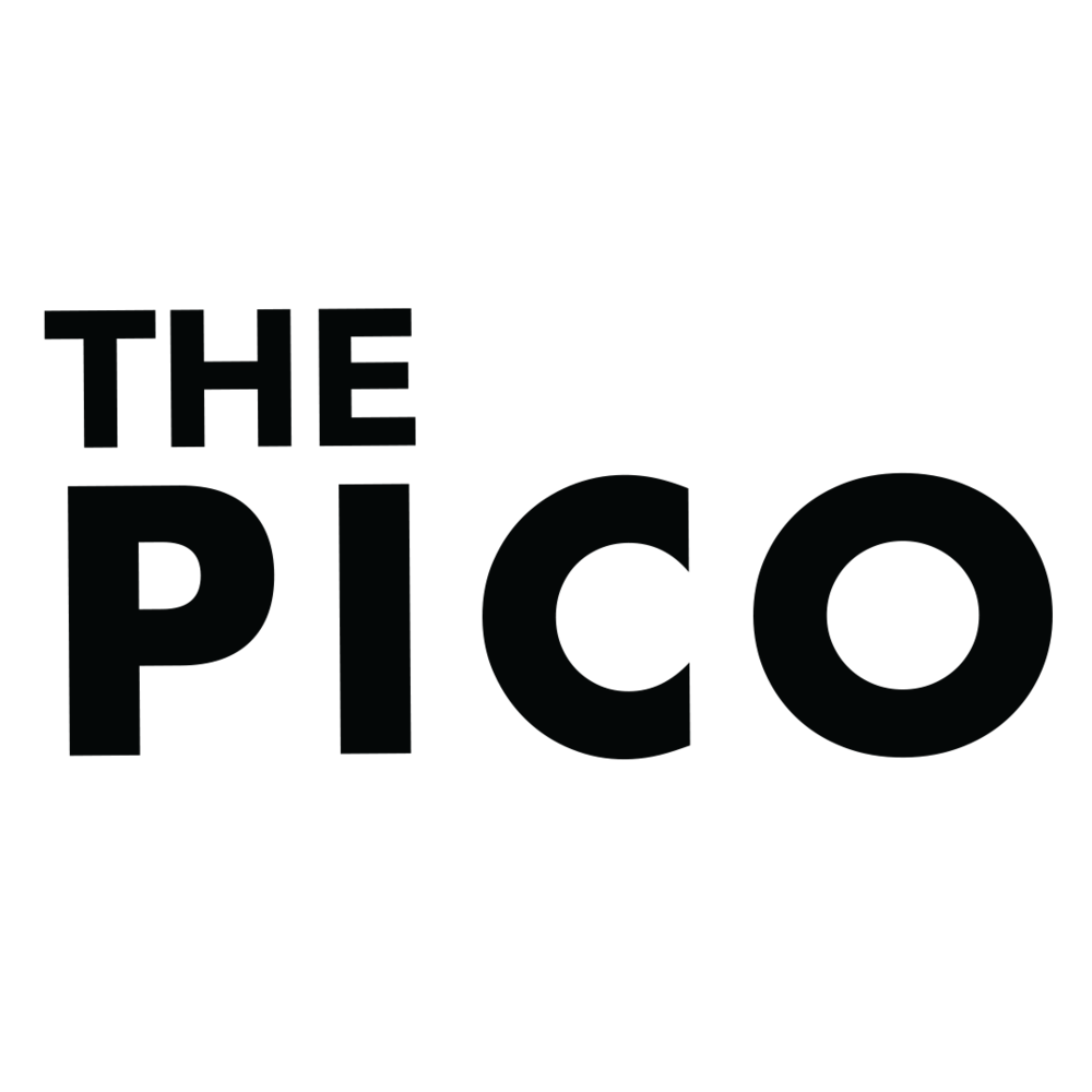 ThePICO_Logo.png