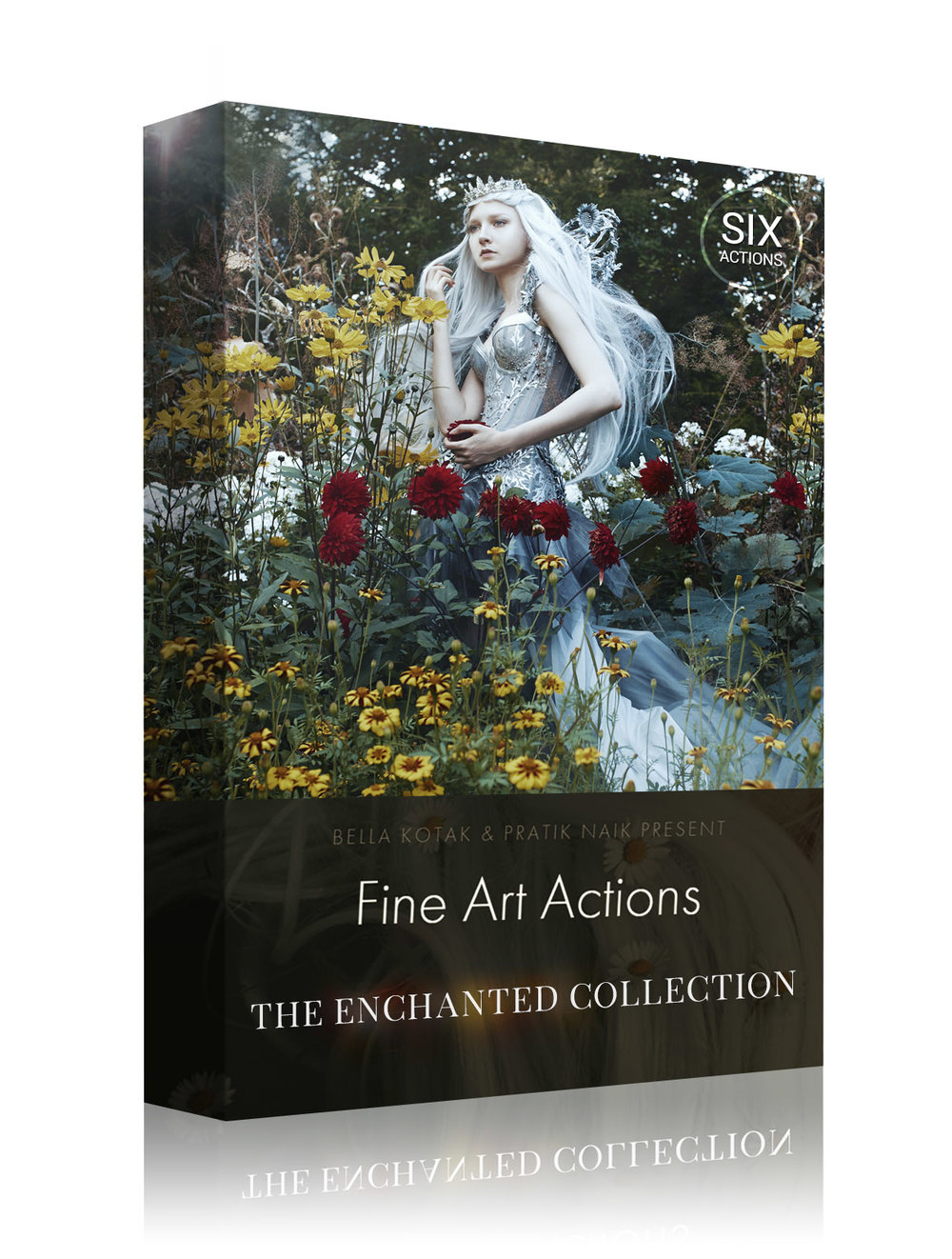 Box Design - The Enchanted Collection.jpg