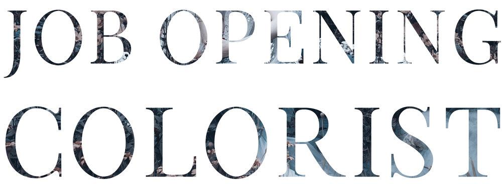 Job Opening - Colorist.jpg