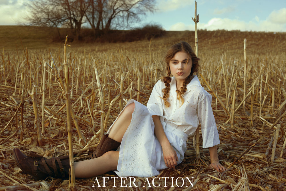 Action - Golden Harvest