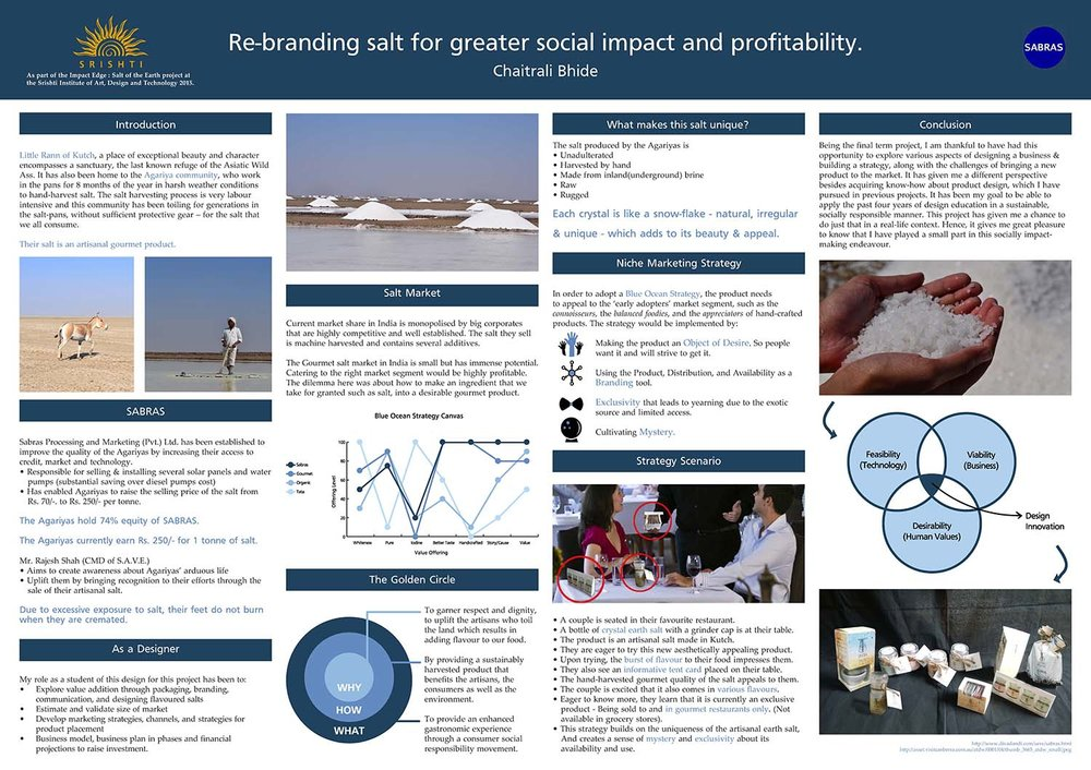 Poster Pitch of Business Plan: To read more details, click on the image or view the  Poster Pitch here .