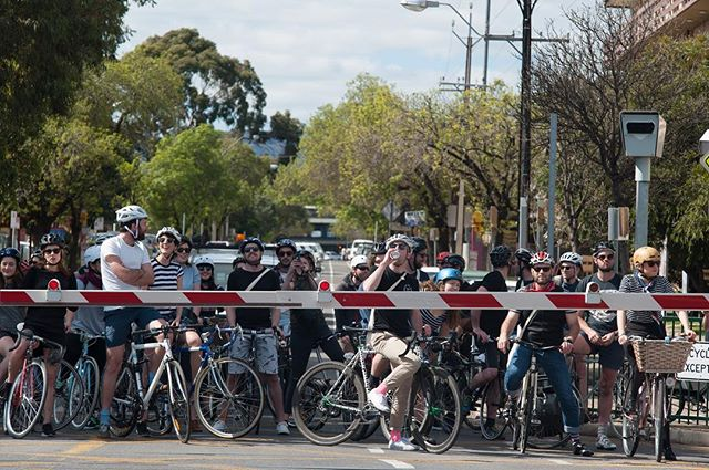 Treadly's annual Boucle De Burbs rolls into town next month, with over 500 trusty steeds hauling about Adelaide's best laneways and backstreets. Treadly Bike Hire is offering free hire for the duration of the event. Check link in the bio for full details. . . #seesouthaustralia #ichoosesa #adelaideevents #treadlybikeshop #treadlybikehire #boucledeburbs #bikes