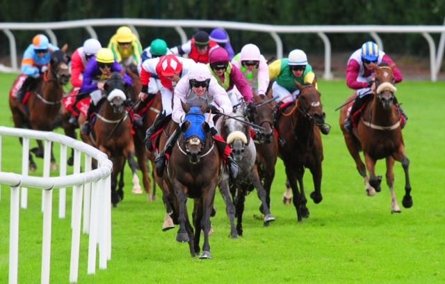 galway races.jpg