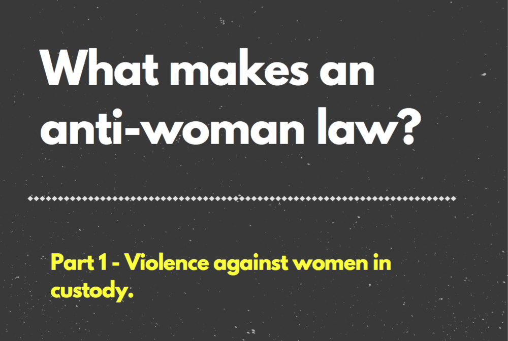 Anti-Woman Law Feminist Foreign Policy Violence against women in custody