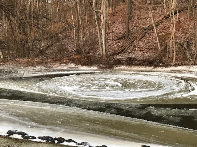 A frozen swirl in the creek.