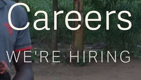 Join APP today! We're currently looking for a Country Director in Kenya. Are you interested? Please visit our careers page for full job description and application details.  Link in Bio  #Careers#Vacancy#Jobs#Kenya#Prisons#Africa#Changemakers#Change