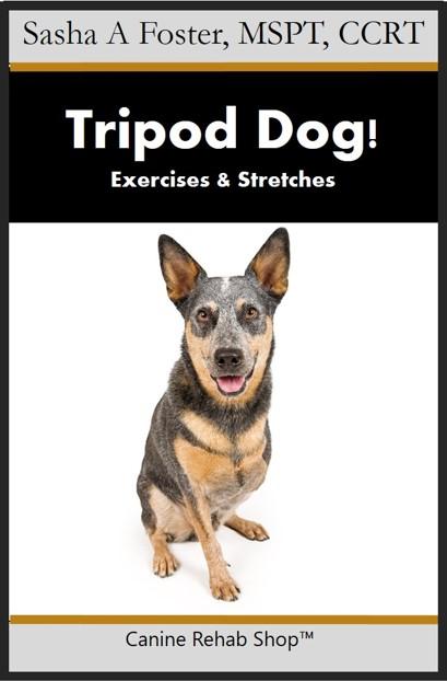tripod dog branded.jpg