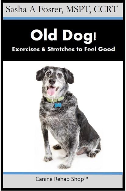 old dog branded.jpg
