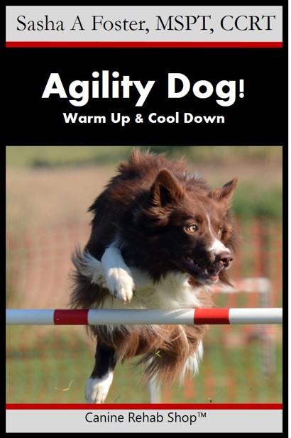 agility dog branded.jpg