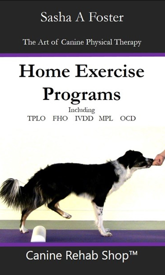 canine-home-exercises-book-cover.jpg
