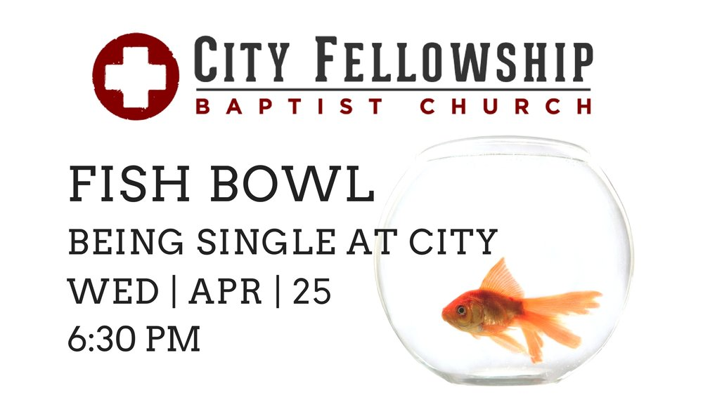 Fish Bowl SINGLE.jpg