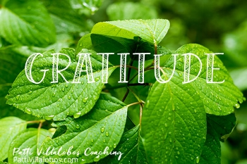gratitude-green-leaves.jpg