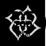 YA 200Hr Logo