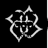 YA 300Hr Logo