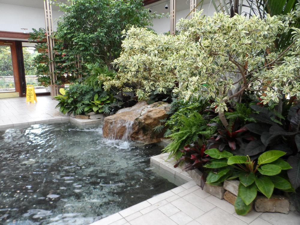 Inside Powell Gardens in Kingsville, Missouri
