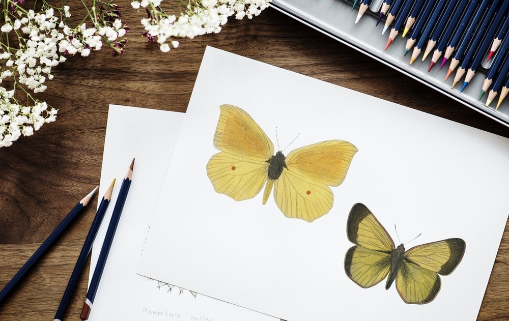 Drawing, sketching, coloring, cardmaking...Which type is right for you?