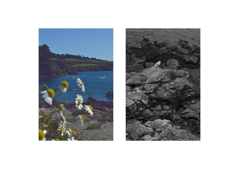 Cornwall 3.jpg