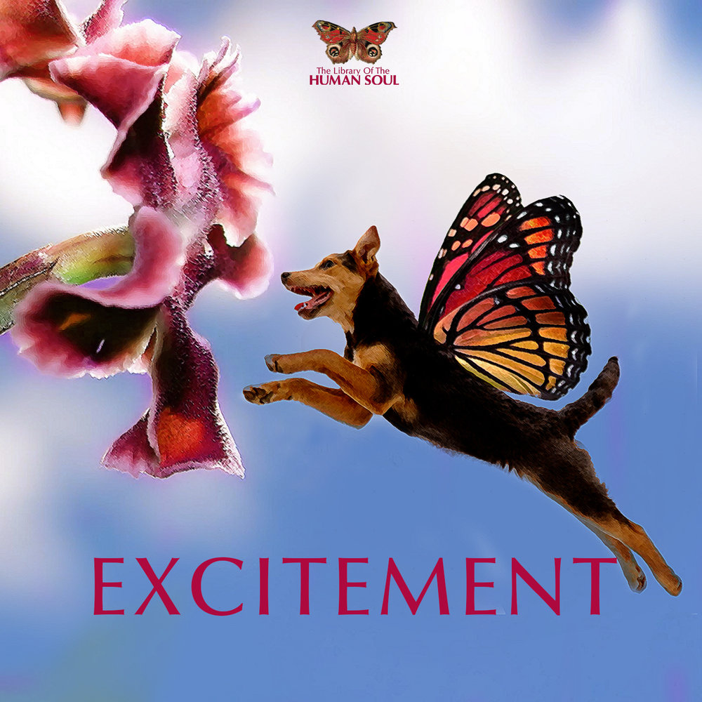 Excitement_cover.jpg