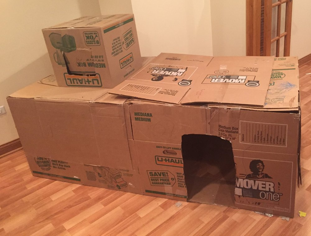 Of course, if you have an excess of boxes, a box fort is always a hit!