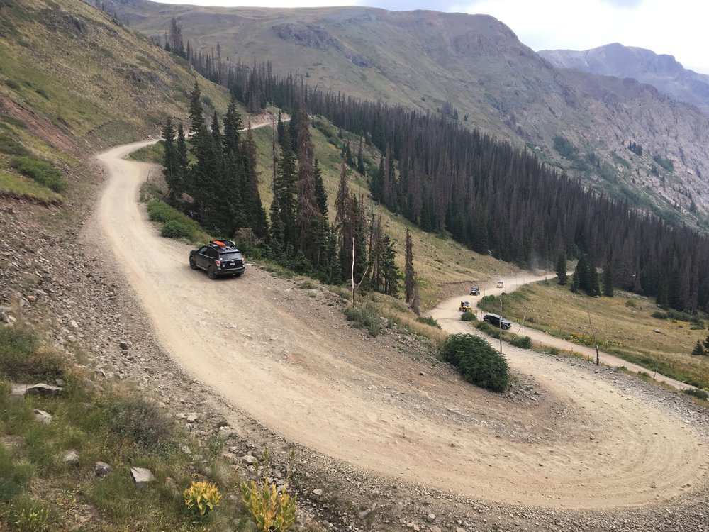 On the trail to Cinnamon Pass, approximately 11,300'