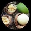 Monoï Olie:  Deze exotische blend van kokosolie en Tahitiaans gardenia-extract is rijk aan essentiële vetzuren. Het gaat pluis tegen, zorgt voor extra glans en beschermt tegen beschadiging.