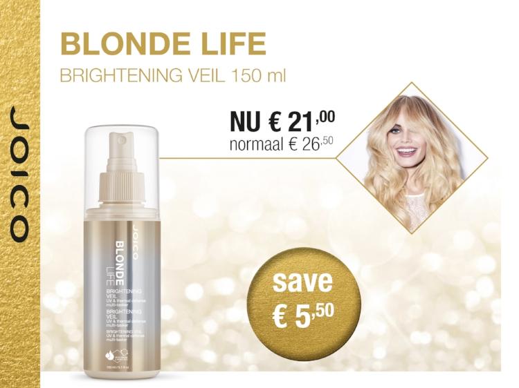 Blonde Life Veil-A5.jpg