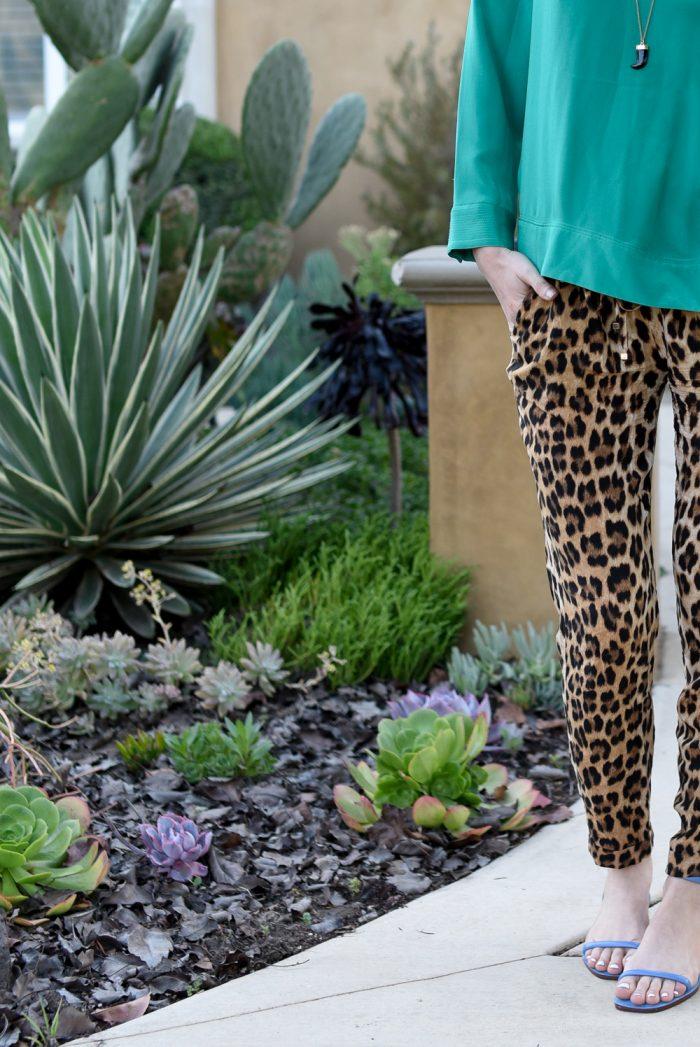 zara-cheetah-print-pants.jpg