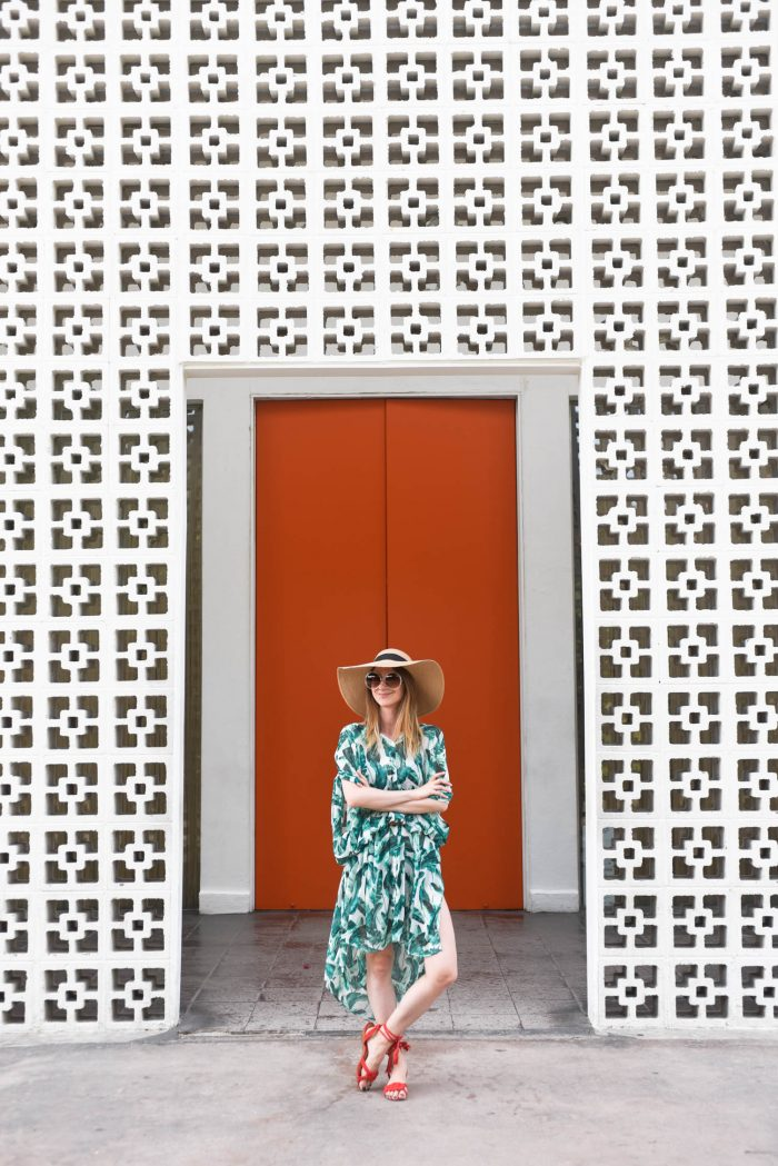 the-parker-palmsprings-tropical-palm-print-dress