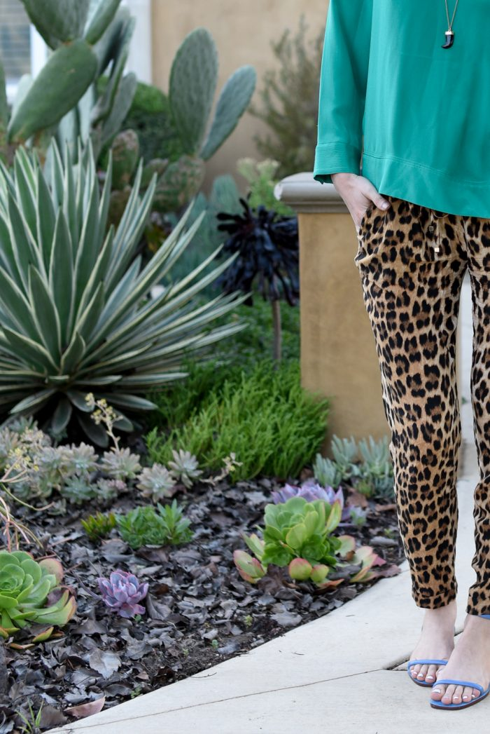 zara-cheetah -print-pants