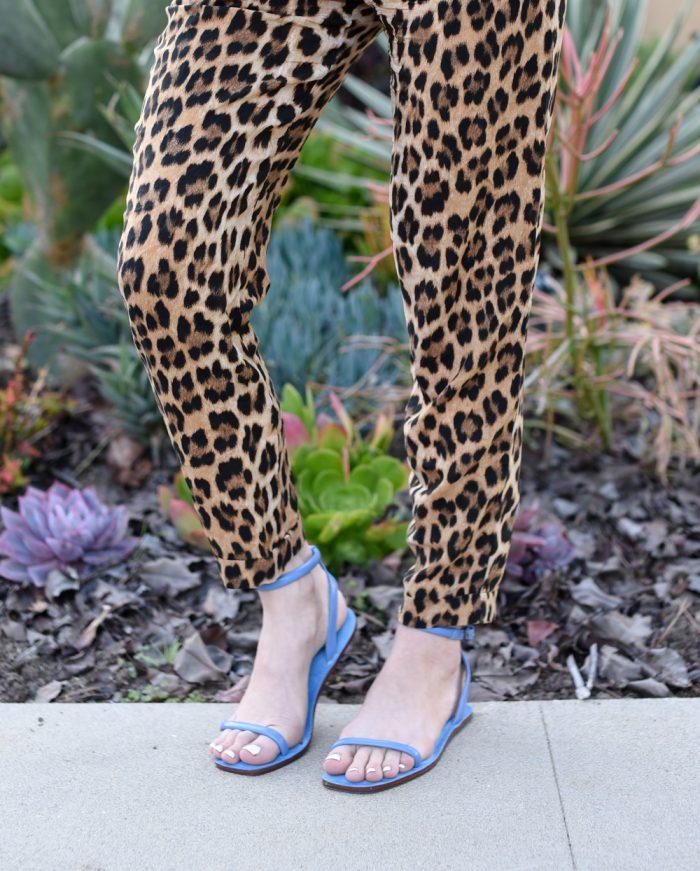 zara-leopard-pants