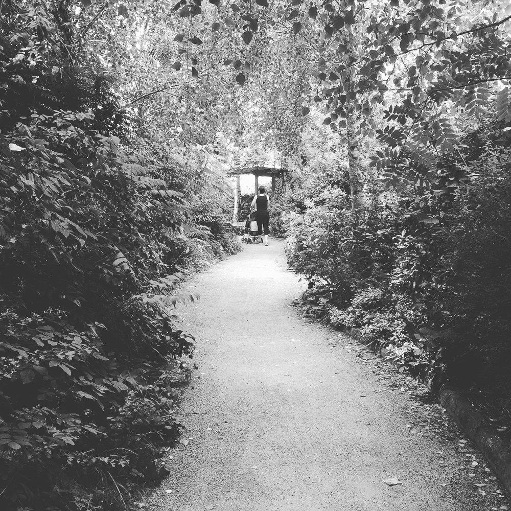 walking in Delta Sensory Gardens Carlow