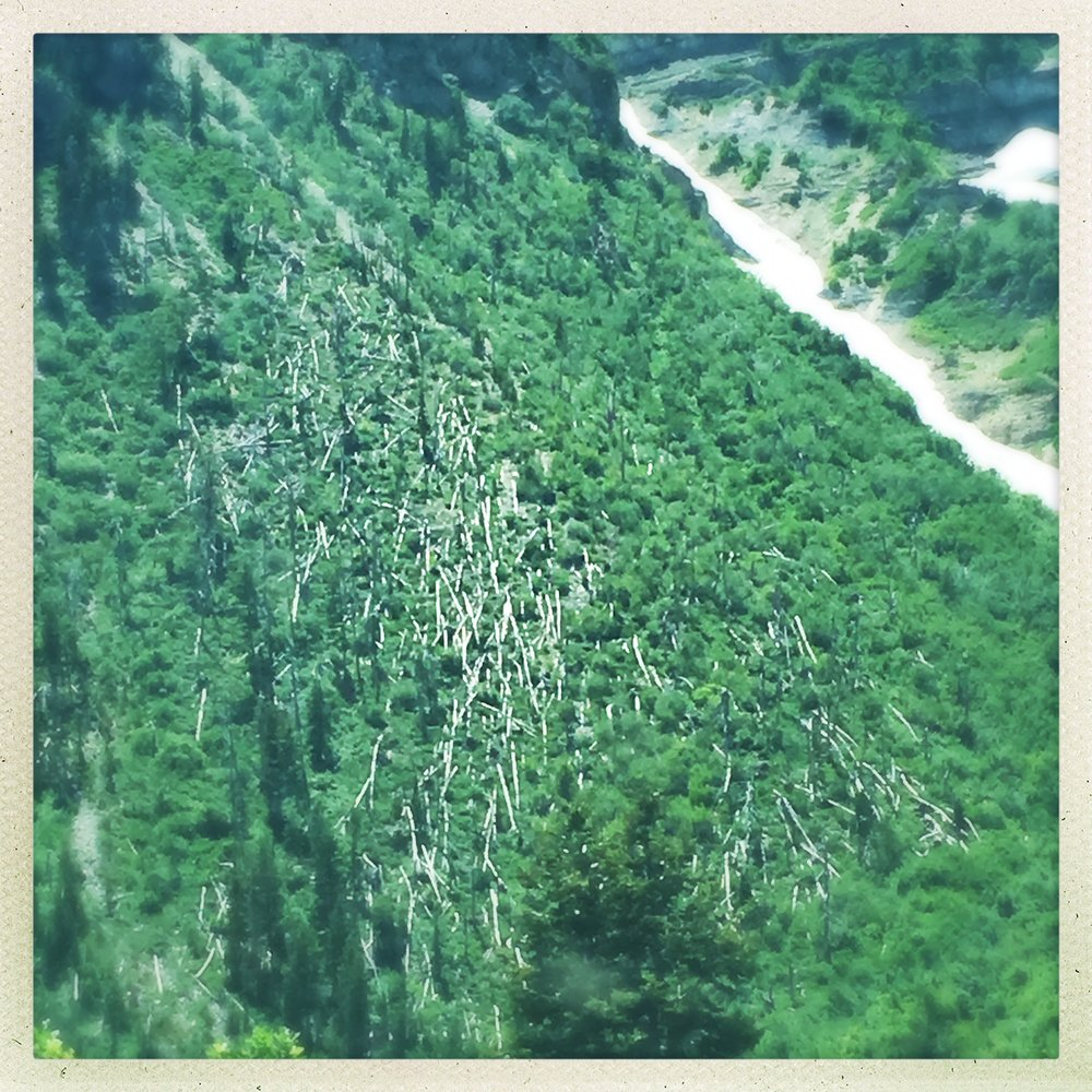 avalanches past, timpanogos