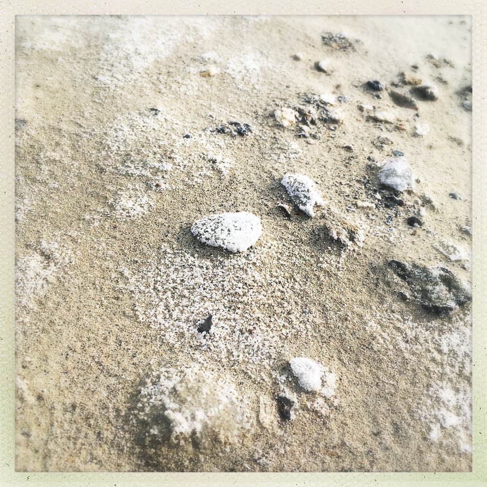 and salt abounds. it rests a a crust over anything near the water that remains still...