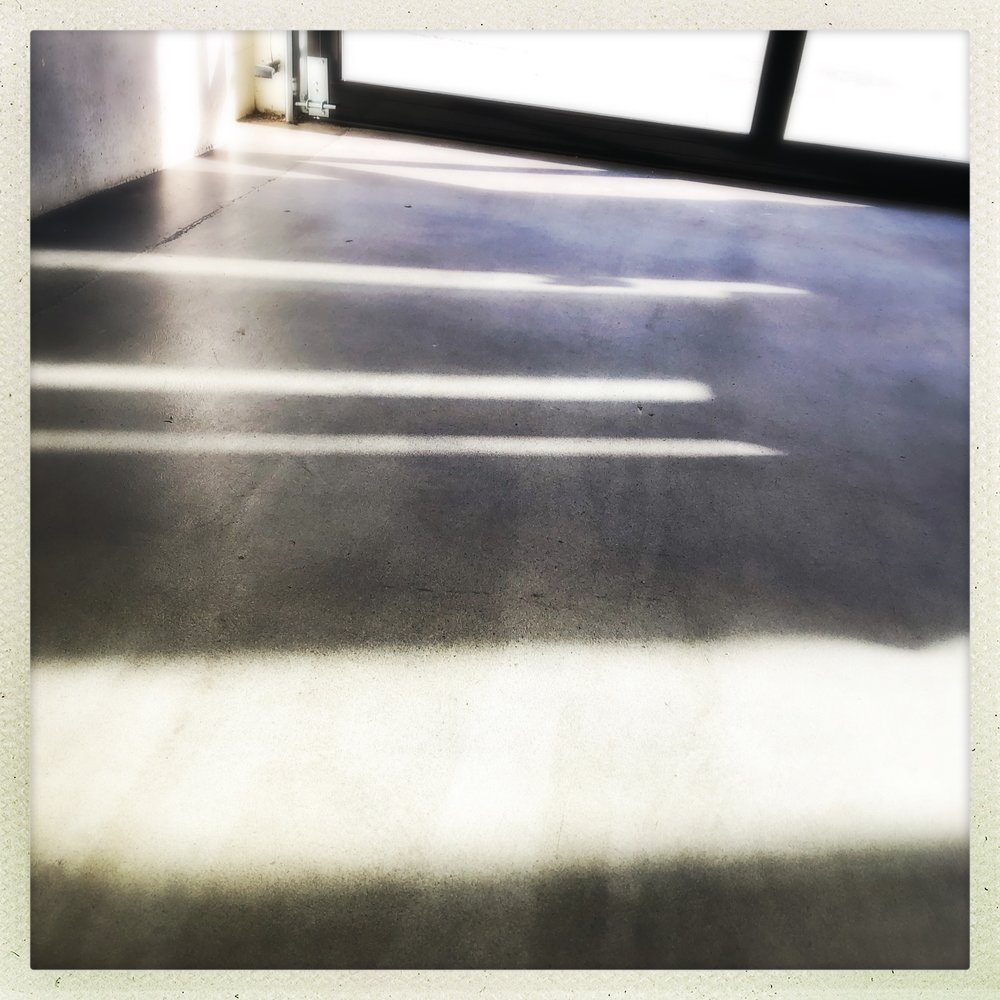 light of a particularly heavy, claylike quality. the floor, Campos.