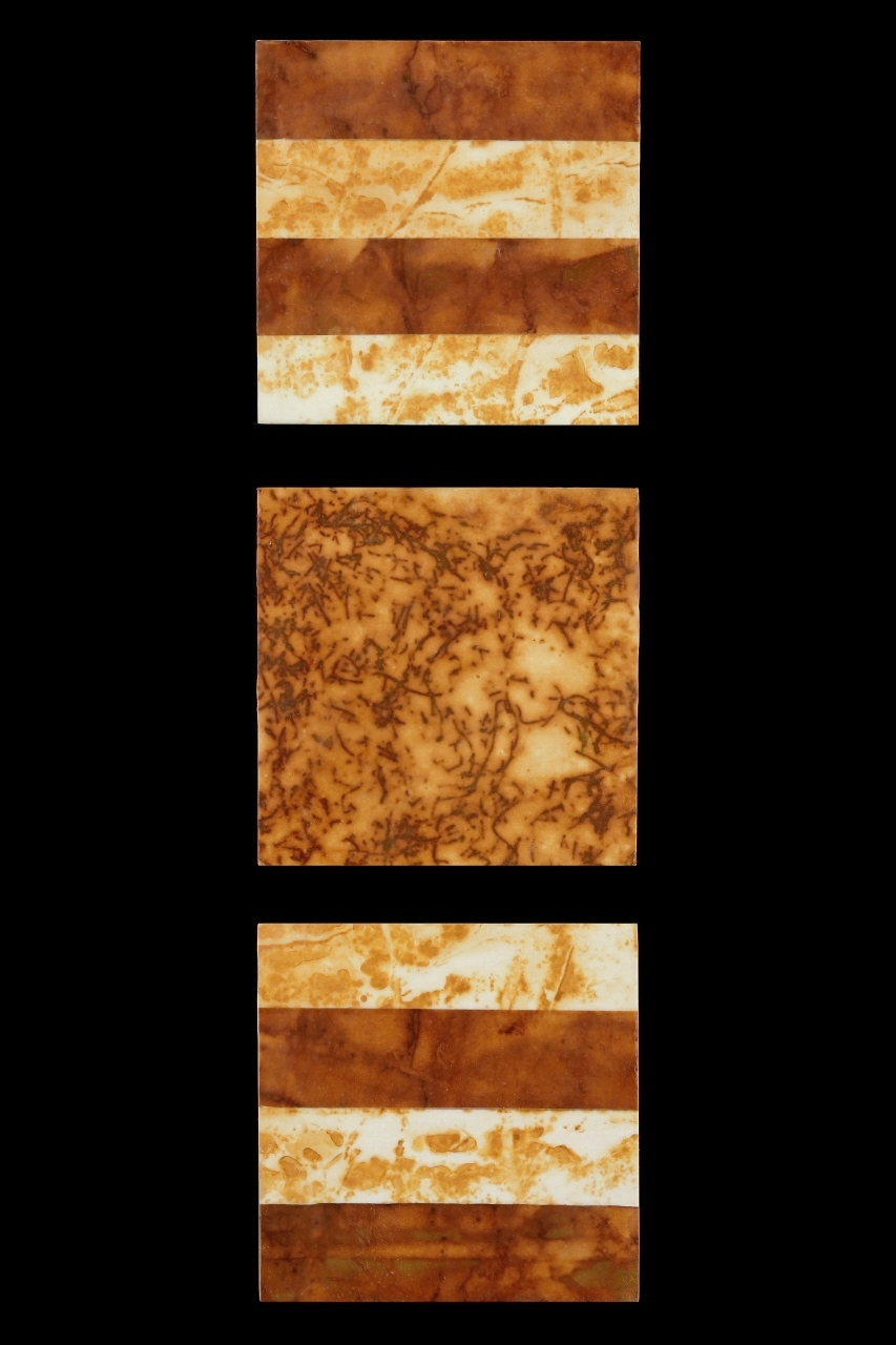 Rust Grouping #3, 2013, Rust, encaustic on paper on panel, (3 pieces) 19 1/2 x 6""