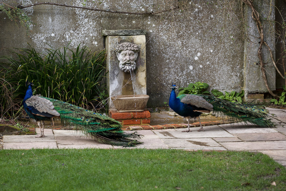 Northbrook_Park_Wedding_Photographer_Farnham_024.jpg